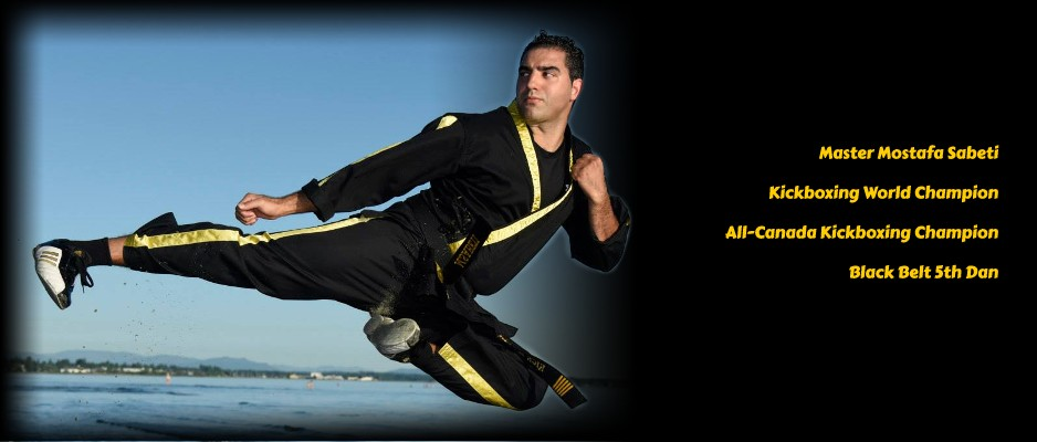 Mostafa Sabeti, Kickboxing and Karate Master